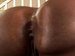 Tribe is a big beautiful black BBW who loves around fuck random namby-pamby guys